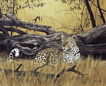Leopard at dead tree von Andre Olwage