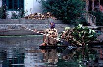 Lake cleaner von Anna Kazanova