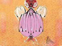 ballerina by Claudia Alegre