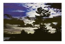 Evening Falls by Robert  Perks
