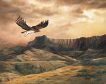 Eagle at sunset by Andre Olwage