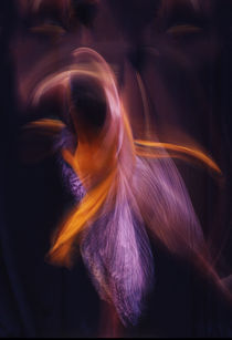 Dancer in Motion by Norm Stelfox