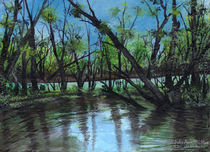 Gator Pond in Bayou by Julie Ann Stricklin by Julie Ann  Stricklin