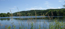 Am See von Ina Hartges