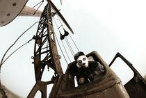 mr panda man by Maciej Kozuch