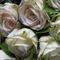 White-roses-print