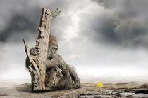 Hoffnung  by Werner Dreblow