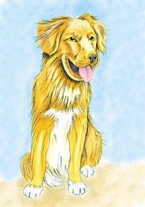 Dog by Viorica (Violet) Vandor