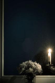 Blumen Fenster von Max Nemo Mertens