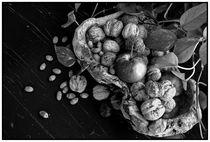 Fruits of autumn by Luka Balic
