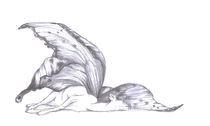 Winterschlaf by Anna-Hoa Masche