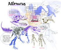 Allosaurus by Tim Drake