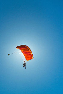 Gliding vibrance von Konrad Sarnowski