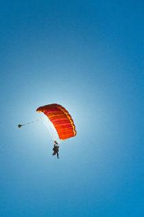 Gliding vibrance by Konrad Sarnowski