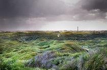 Norderney, bewachsene Dünenlandschaft III by Thomas Schaefer