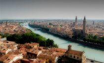 Verona by Ivan Aleksic