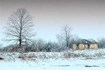 Winter by Ivan Aleksic