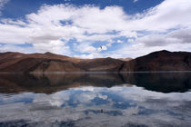 The serene waters of Pangong Tso, Ladakh by Ruchika Vyas