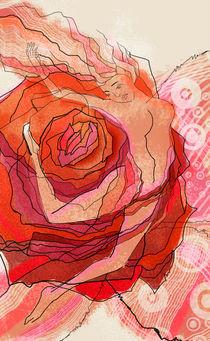 Red rose by Krasimir Rizov