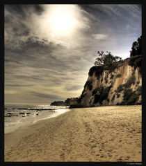 Paradise Cove by Jason Mayes