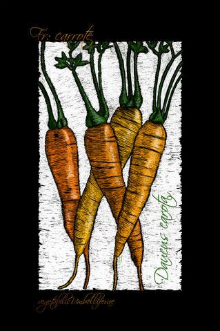 Vegetabilis3-carrots