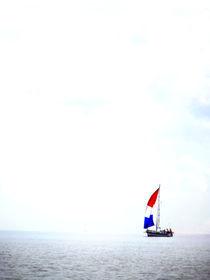 Lonley sails