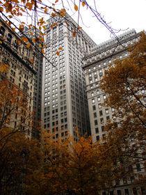 Manhattan's Finest. by Jessica Evans