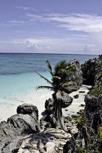 Bahia maya by Julio Guajardo