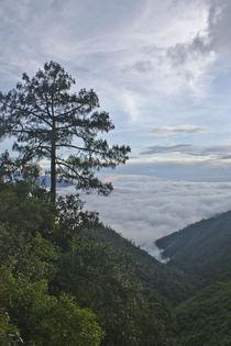 En las Nubes by Julio Guajardo