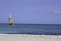 Playa von Julio Guajardo
