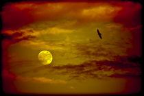 Red-full-moon-fullsize