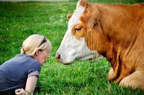 Hof Butenland: Echte Tierliebe III von Thomas Schaefer