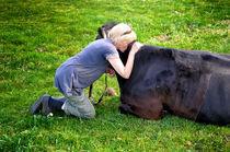 Hof Butenland: Echte Tierliebe I by Thomas Schaefer