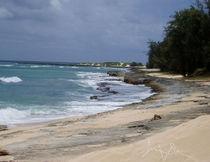 Turtle Bay Beach 2 by Jimmy Pribble