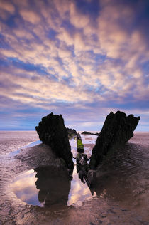 Shipwreck, Berrow, Somerset von Craig Joiner