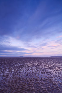 Berrow Flats, Somerset von Craig Joiner