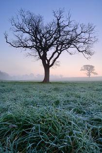 Rural Dawn Landscape von Craig Joiner