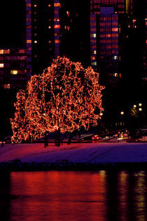 Tree of Lights 279 by Patrick O'Leary