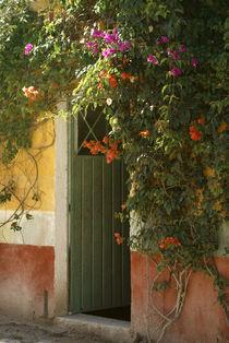 Flower Bedecked Doorway by John Mitchell