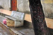 still scene in nandaime, granada, nicaragua by Charles Harker