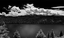 Fallen Leaf Lake von Rick Sharf