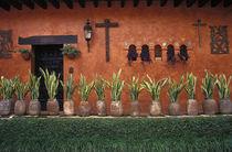 Cuernavaca Wall von John Mitchell