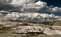 Mammoth Falls von Rick Sharf