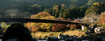 Mitake Bridge by Rick Sharf