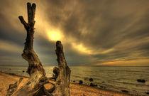 Brook Ostsee by photoart-hartmann