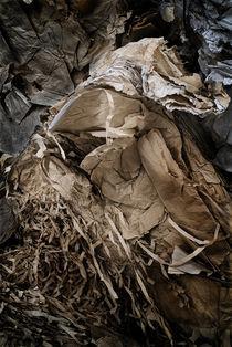 Recycling I von Gonzalo Sanguinetti Solana