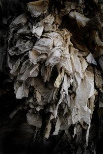 Recycling III von Gonzalo Sanguinetti Solana