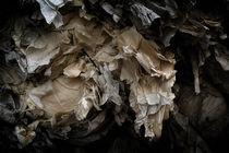 Recycling IV von Gonzalo Sanguinetti Solana