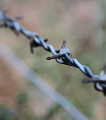 Barbed Wire von Buster Brown Photography