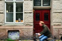 Man on a Bike Amsterdam, Holland by Brian Scott